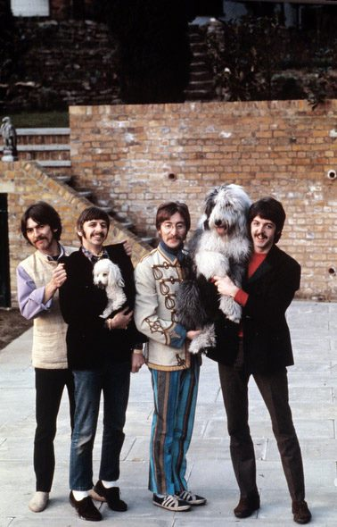 The Beatles pose in Ringo Starr's backyard, 1967. McCartney holds his sheepdog Martha, who would later be the inspiration for the song Martha My