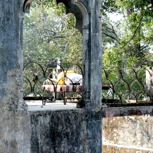parte-do-que-foi-o-ashram-dos-beatles-em-rishikesh-na-india-1330013776633_300x300